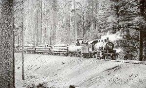 mccloud train hauling logs