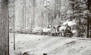 mccloud train hauling logs